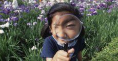 【1年生】充実した夏にするための学習計画のコツ