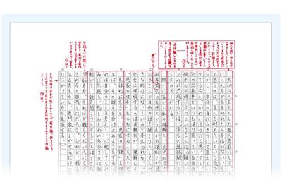 Z会の通信教育 受験小論文シリーズ 添削指導例