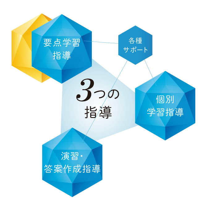 目標達成のための3つの指導「要点学習指導」「演習・答案作成指導」「個別学習指導」各種サポート