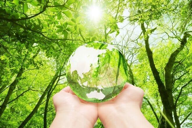 大木さんは環境問題について企業ができることを真剣に考え、取り組んだ